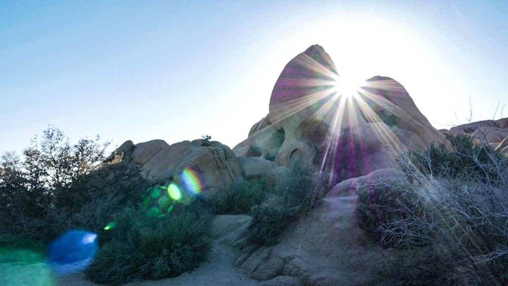 A picture of Skull Rock in Joshua Tree, California. It is a large rock that looks like the side of a skull. The sun is shining through a crack in the rock, which makes colorful streaks of light, which are called light leaks.